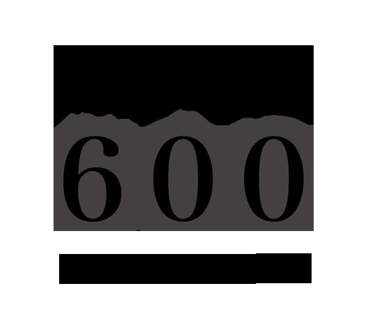 対応車種600以上のラインアップ