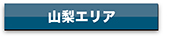 agency_yamanashi_btn